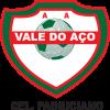 A. A. VALE DO AÇO